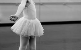Lesvervanging basisscholen Dansproeverij 2