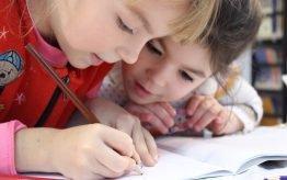 Lesvervanging workshop basischool Kunstwerken van Nederlandse bodem